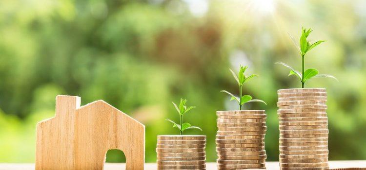nouvelle loi emprunteur